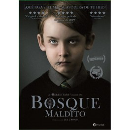 Bosque maldito - DVD